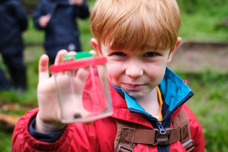 Forest School featured image